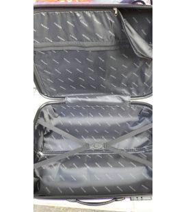 Валіза Gravitt DS 310 Mini срібна картинка, зображення, фото